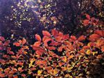 .:.Autumn Leaves.:.