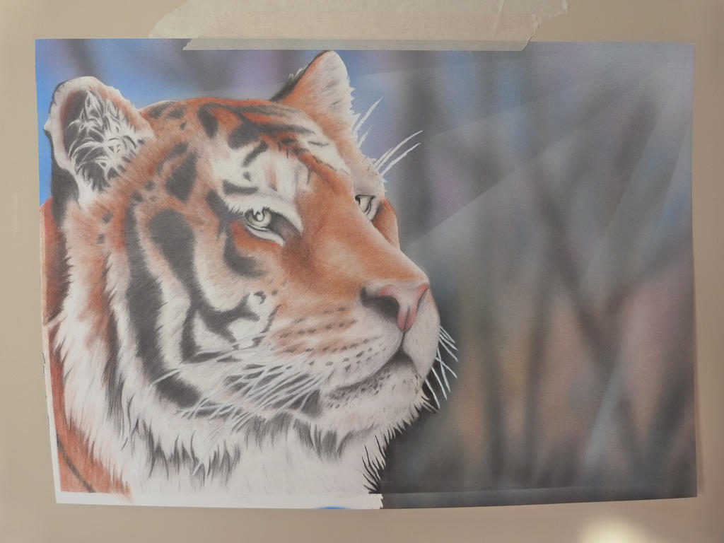 Tiger by mocksey