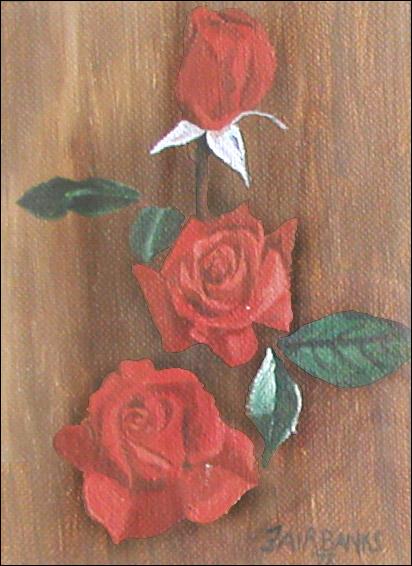 Roses by sfairbanks