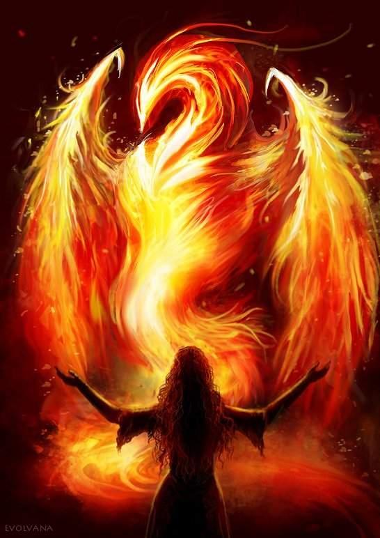 The Phoenix by Evolvana