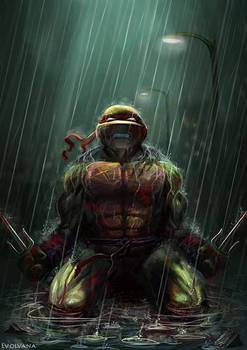 Raphael ~ TMNT