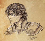Cahir - The Witcher's team