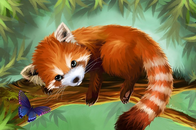 Red Panda by Evolvana