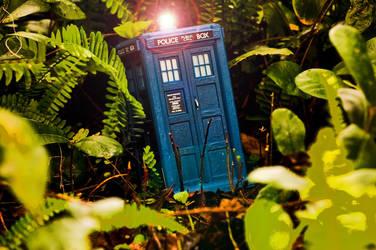 TARDIS Landing by Batced