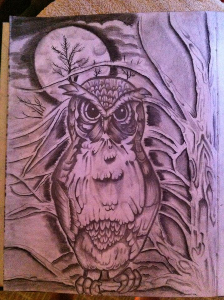 Owl Drawing Color Owl Drawing by Vegasdeviant
