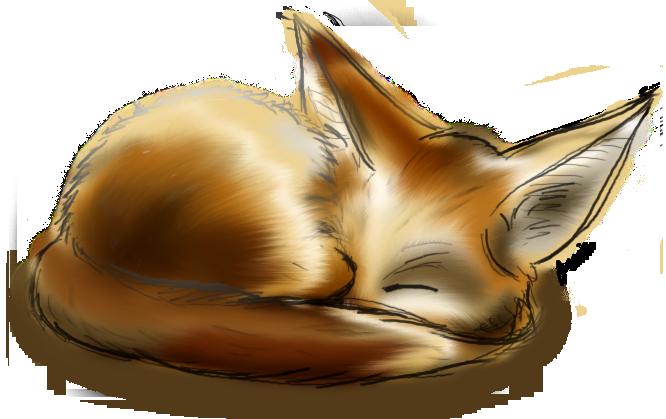 how to draw a fennec fox cartoon