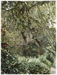 Rosemoor Gardens III by JamesYoungArt