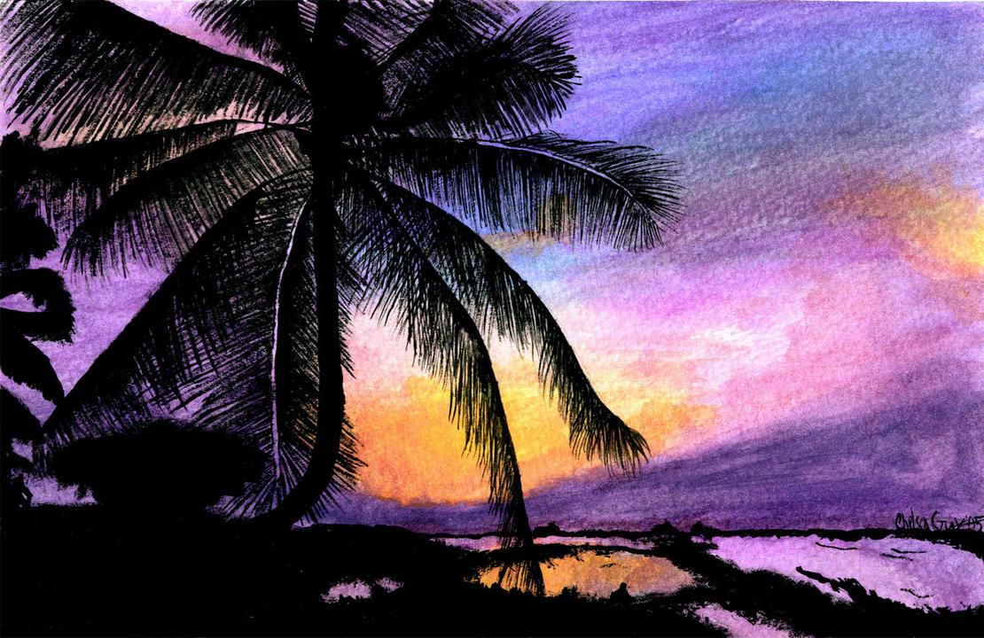 tropical sunset palm tree - photo #17