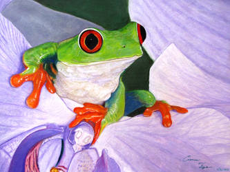 Tree Frog by CierraFrye