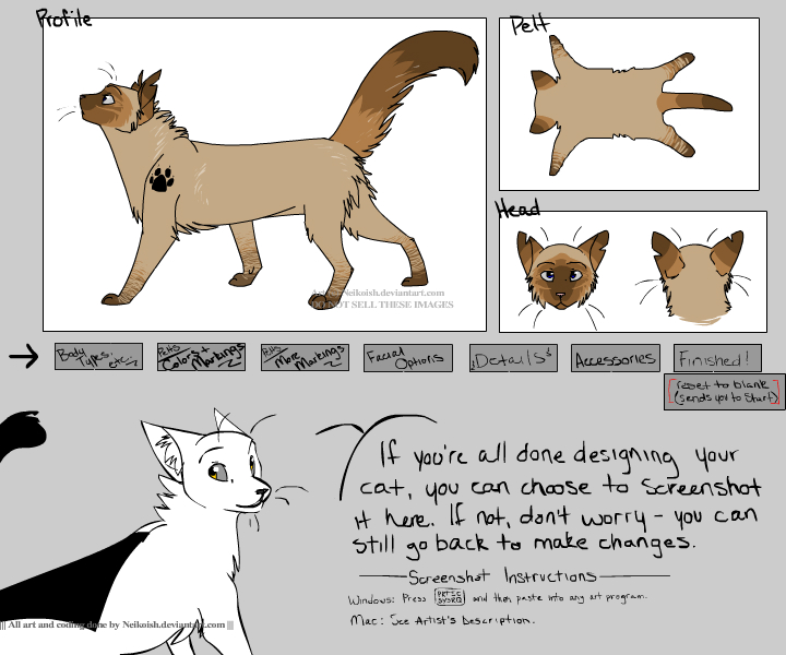 Warrior Cat Names With Descriptions