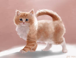 Fluffy Kitten Painting by BAE-MON