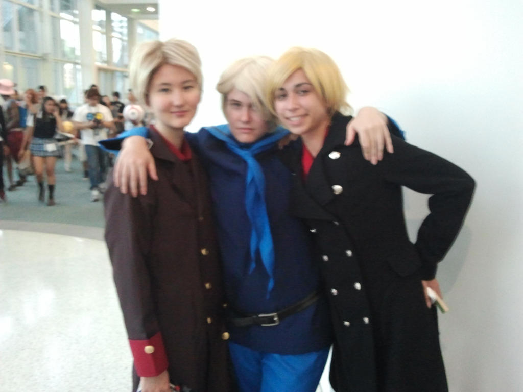 Anime Expo 2013 - Iceland, Norway and Denmark by Dark-Elf-Kana