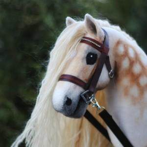Eponi-hobbyhorses's Profile Picture