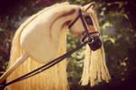 Arabian hobbyhorse 'Veilfire' by Eponi-hobbyhorses
