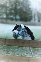Hobbyhorse pony 'Pierrot Prince' by Eponi-hobbyhorses