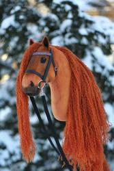 Hobbyhorse 'Titarion' by Eponi-hobbyhorses