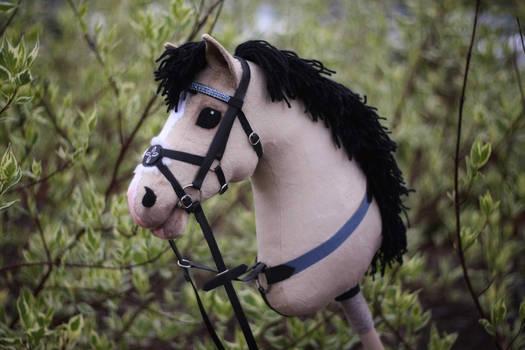 Hobbyhorse 'Baya Malay'