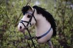 Hobbyhorse 'Baya Malay' by Eponi-hobbyhorses