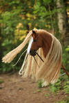 Hobbyhorse with a war bridle by Eponi-hobbyhorses