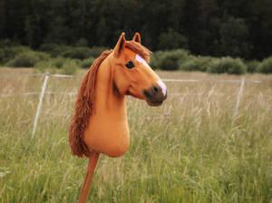Hobbyhorse 'Flamenco'