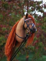 Hobbyhorse 'Amorina'