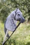 Hobbyhorse 'Escarcha' by Eponi-hobbyhorses