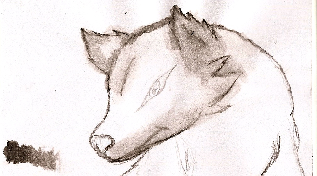 Wolf Watercolor Practice by NeonNeoz