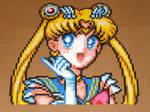 Sailor Moon Super S Portrait