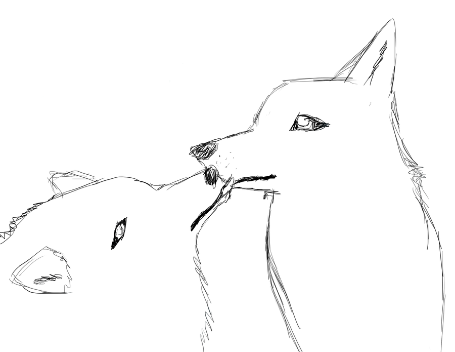Wolfy's Gallery - Page 2 Realistic_Wolf_Couple_Sketch_by_wolfy987