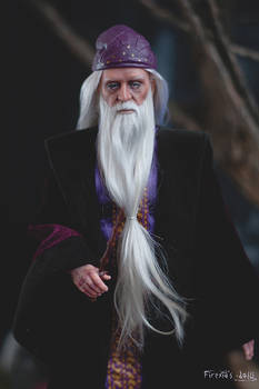 Albus Dumbledore custom portrait doll