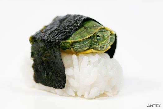 Turtle Sushi
