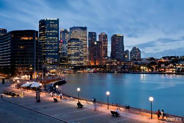 Sydney Harbour Skyline by antontang