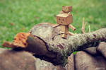 Cross The Log