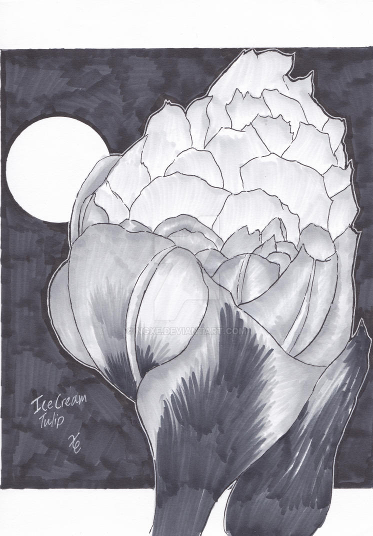 Ice Cream Tulip from inktober2016 by ngxe