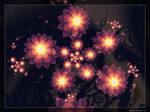 Fractal flowers 2 by Sophie-Y
