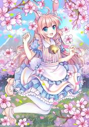 (C)  Sakuras!