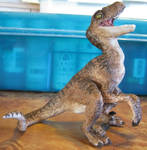 Deinonychus Hatchling, View 2