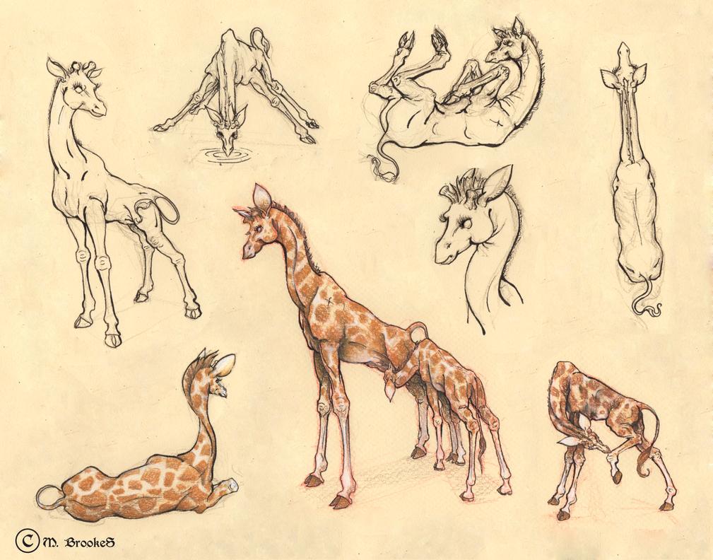Giraffe Character Sheet by she1badelf