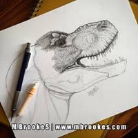 Tyrannosaurus rex Study - Update 2
