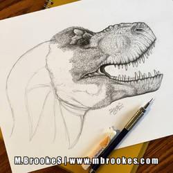 Tyrannosaurus rex Update 3