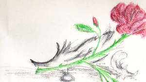 Darien's Rose Part 4