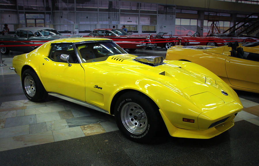 chevrolet corvette stingray 1973 by skydarko on deviantart. Cars Review. Best American Auto & Cars Review