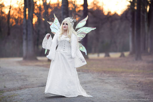 Winter Fairy Queen