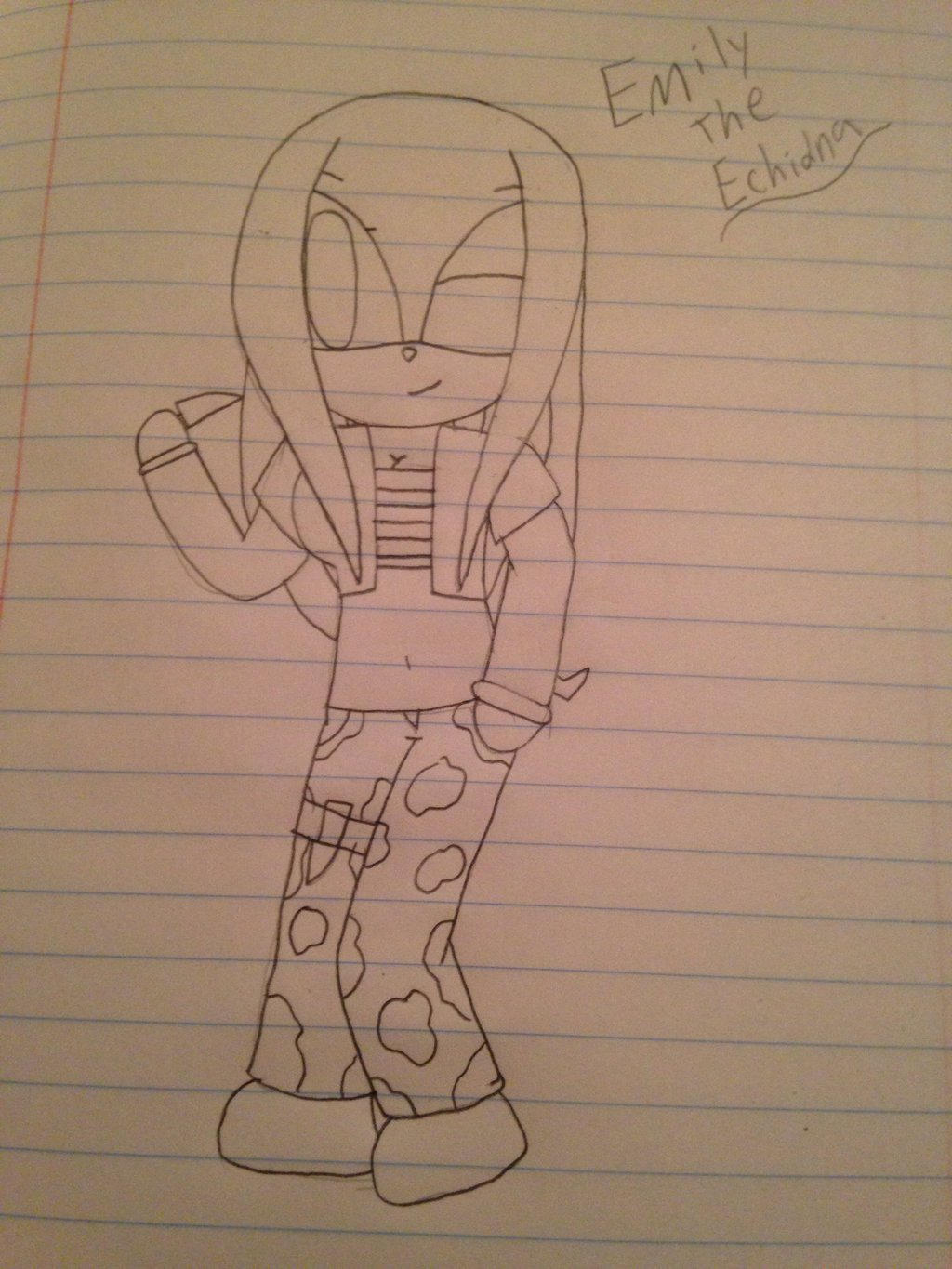 My Sonic OC- Emily the Echidna  by ShadAmyfangirl129