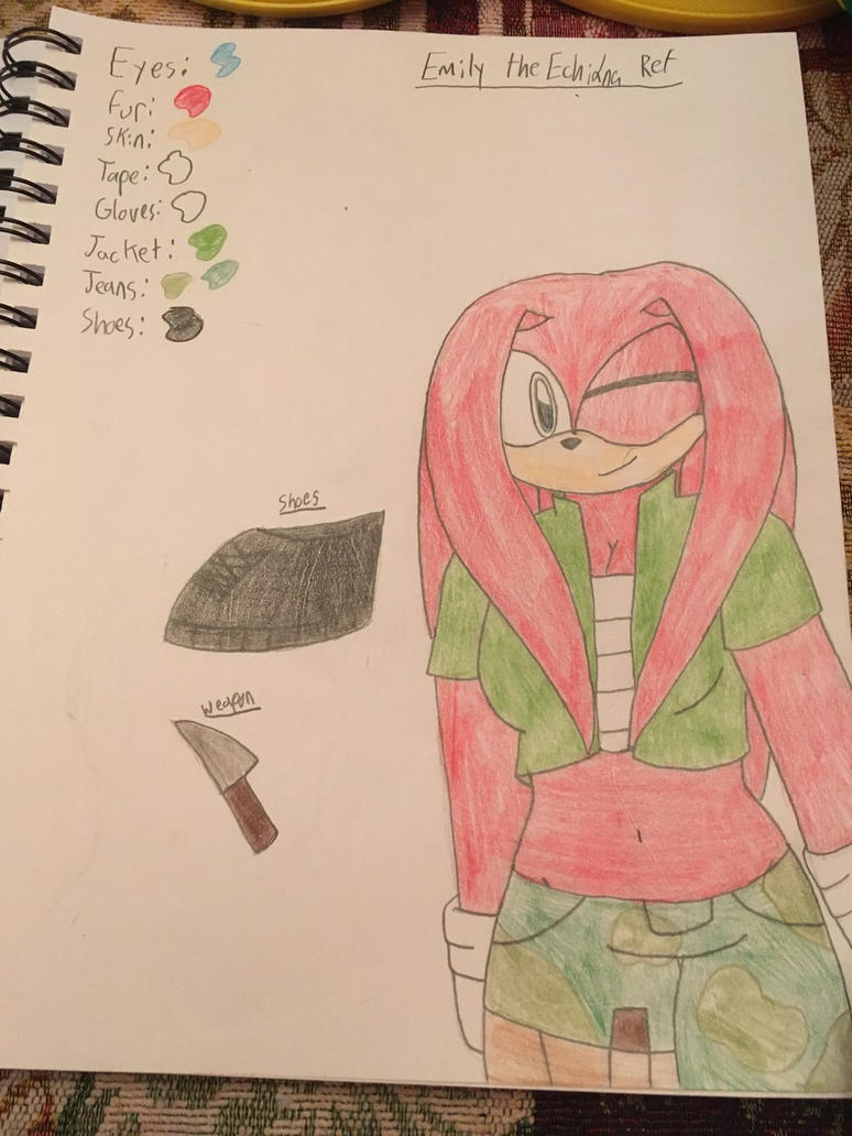 Emily the Echidna Ref (updated)  by ShadAmyfangirl129