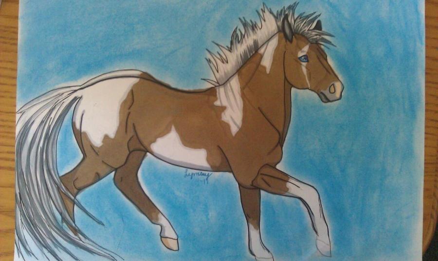 Horse. by Camaru