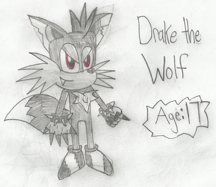 Drake the Wolf by Sonicdude645