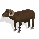 Spore creature - Icelandic sheep (ram 2) PNG by Tote-Meistarinn