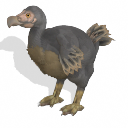 Spore creature - Dodo PNG by Tote-Meistarinn