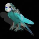 Spore creature _ Budgerigar (male 5) PNG